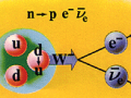 Neutrinos appear in the beta decay of neutrons in nuclei