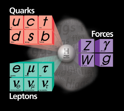 The Higgs boson gives masses  of  weakly interacting particles